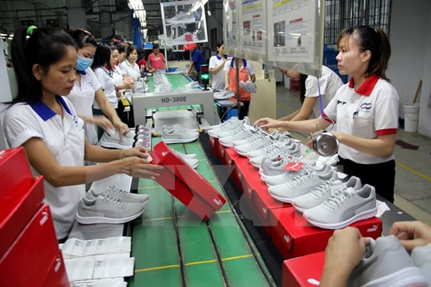 Vietnam expects 10 percent rise in leather, shoe exports hinh anh 1