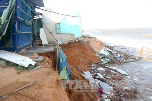 Sea encroachment collapses houses in Binh Thuan hinh anh 1