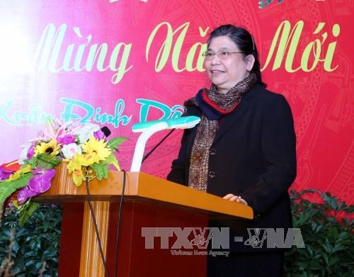 Vice NA Chairwoman meets overseas Vietnamese in New York hinh anh 1