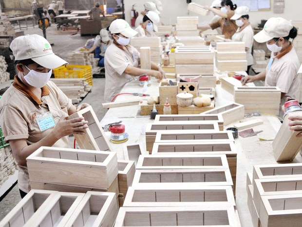 Japanese company invests in Binh Dinh province hinh anh 1