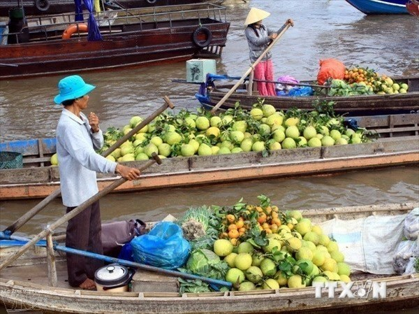 Int'l Mekong Delta agriculture festival slated for March hinh anh 1
