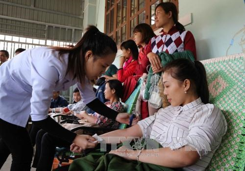 About 10,000 units of blood expected during Red Spring Festival hinh anh 1