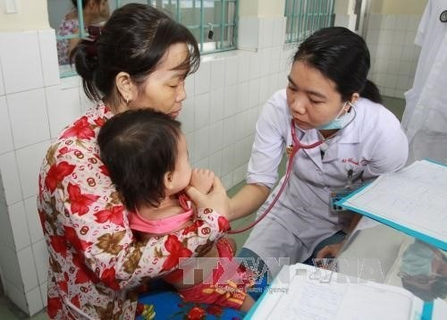 Ca Mau on alert for dengue fever, hand-foot-mouth disease hinh anh 1