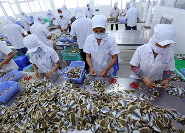 Seafood firms urged to register online hinh anh 1