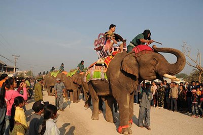 Elephant festival in northern Lao province hinh anh 1
