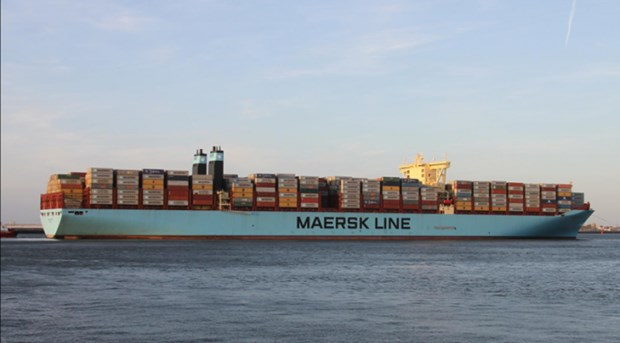 Giant Triple-E container ship docks at Cai Mep int'l terminal hinh anh 1