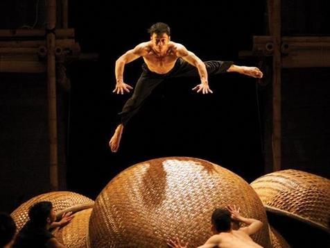 Vietnamese circus dance delights Australian audiences hinh anh 1