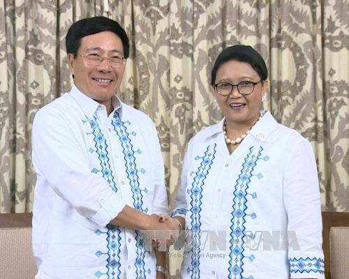 Vietnam, Indonesia consolidate friendship hinh anh 1