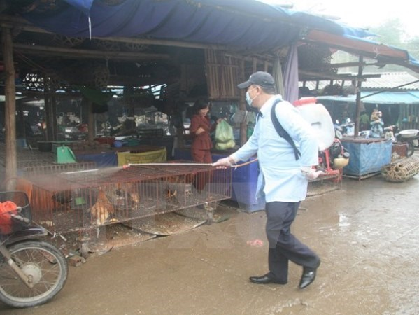 Month of environment disinfection starts hinh anh 1