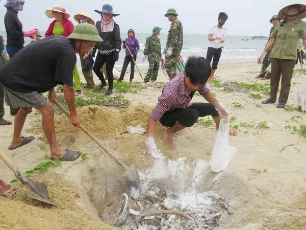 Bodies, individuals responsible for Formosa incident made public hinh anh 1