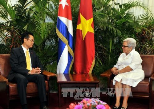Cuban Vice President pins high hope on ties with Vietnam hinh anh 1