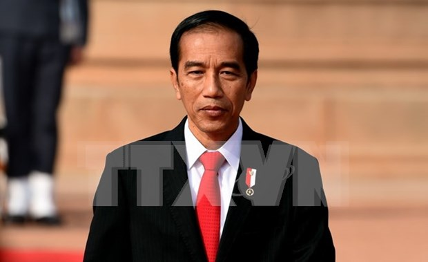 Indonesia, Australia may conduct joint patrols in East Sea hinh anh 1