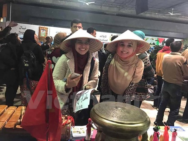 Vietnam leaves impression at cultural festival in Egypt hinh anh 1