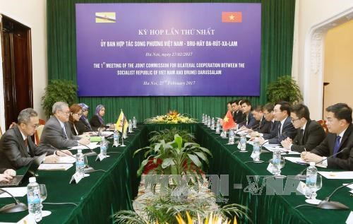 Vietnam-Brunei joint commission's meeting hailed hinh anh 1