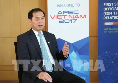 Official: Vietnam makes practical contributions to APEC issues hinh anh 1