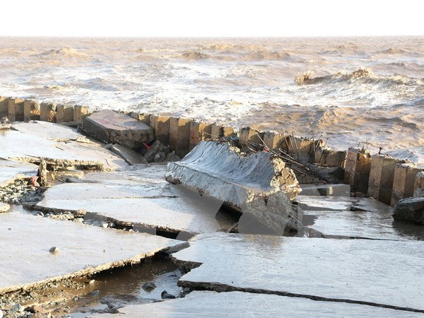 Bac Lieu approves measures to fix eroded sea dykes hinh anh 1