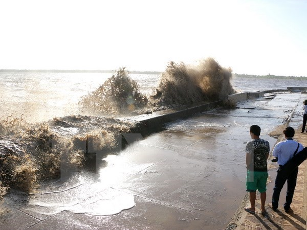 Bac Lieu declares emergency over threatened sea dykes hinh anh 1