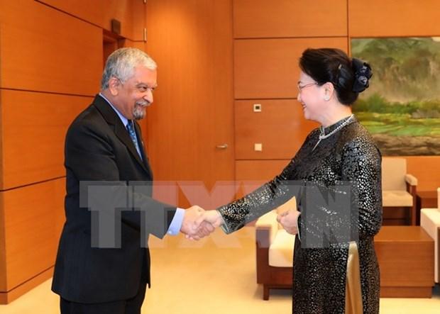 NA Chairwoman praises UN's work in Vietnam hinh anh 1
