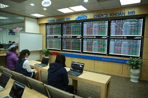 Shares recover on new cash flows hinh anh 1