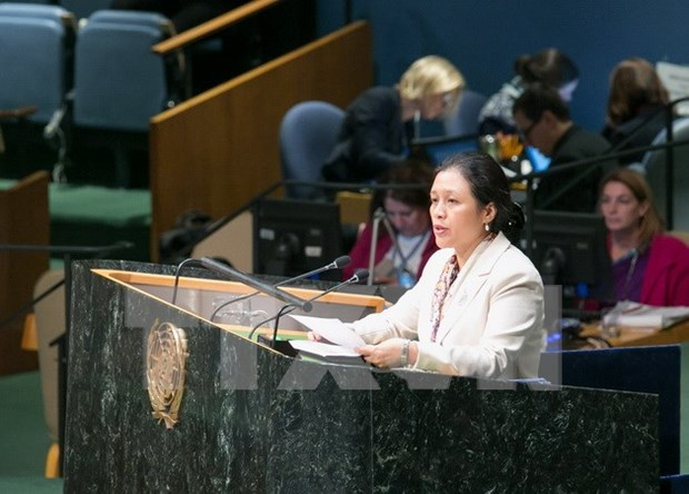 ECOSOC: Vietnam calls for continued resources for development hinh anh 1