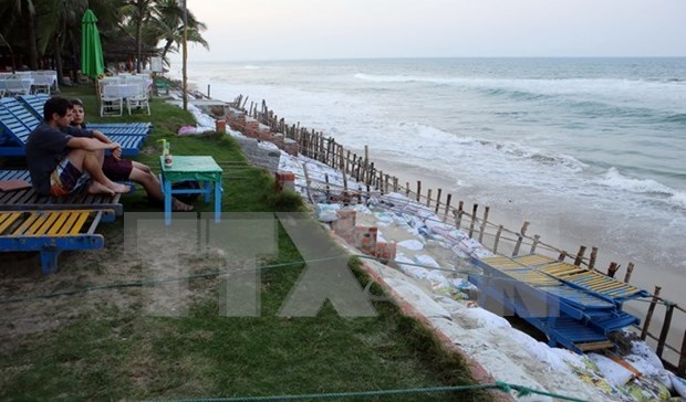 Measures sought to protect Cua Dai beach hinh anh 1