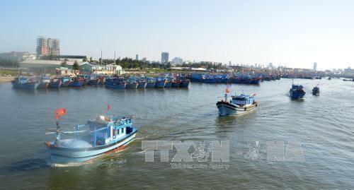Da Nang supports local fishermen hinh anh 1