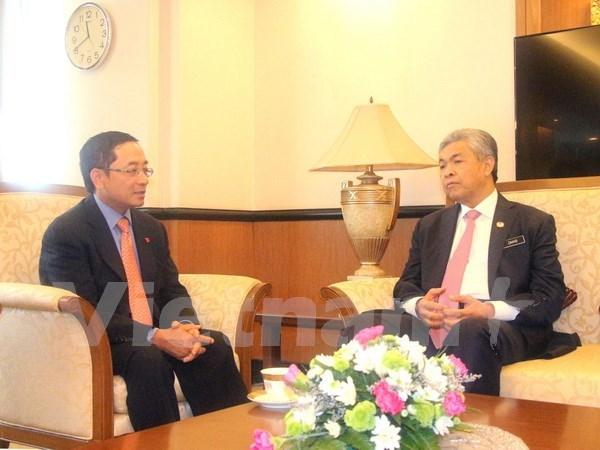Malaysian Deputy PM highlights cooperation potential with Vietnam hinh anh 1