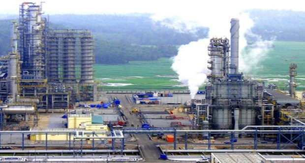 Thai group increases stake in VN's first petrochemical complex hinh anh 1