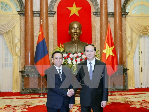 President receives newly-accredited ambassadors hinh anh 3