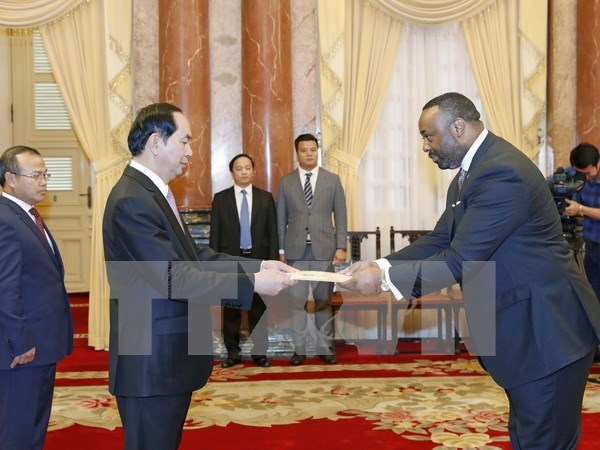 President receives newly-accredited ambassadors hinh anh 6