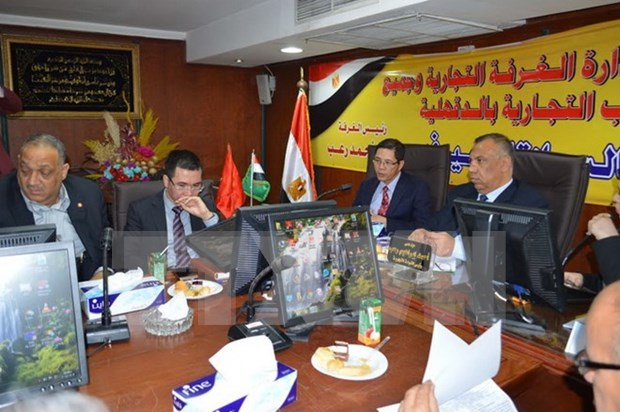 Vietnam promotes trade in Egypt hinh anh 1