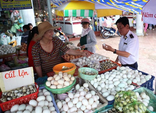 Health ministry to up specialised food safety inspections in cities hinh anh 1