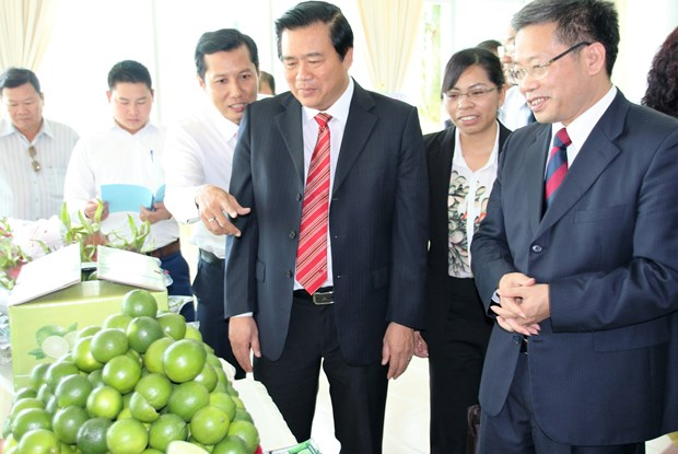 Long An, Chinese locality strengthen cooperation hinh anh 1