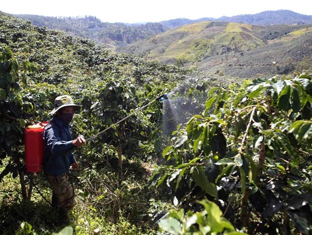 Insiders talk climate, integration-adapted coffee industry hinh anh 1
