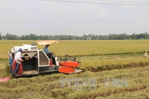 VN agricultural sector urged to modernise technology hinh anh 1