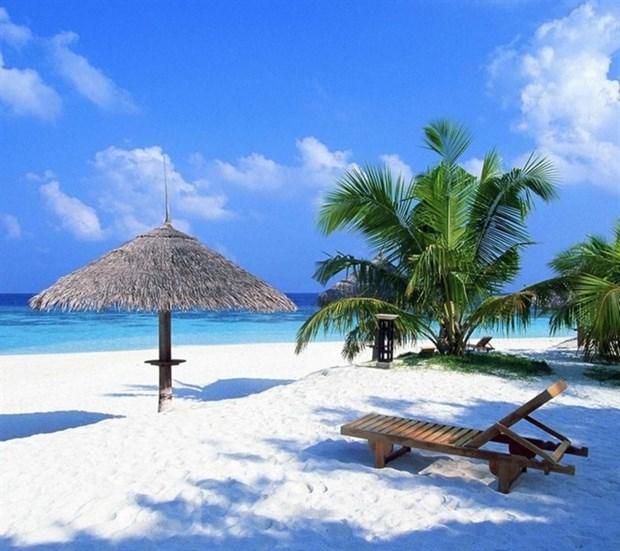 Non Nuoc, An Bang among Asia's top 25 beaches hinh anh 1