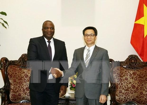 Vietnam, Angola seek closer telecom cooperation hinh anh 1