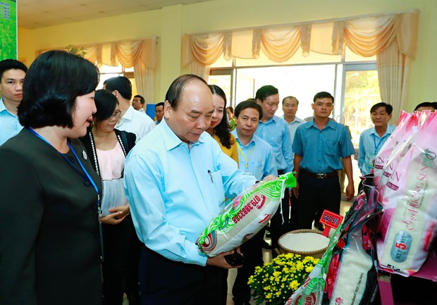 It's time to reform Vietnam's rice sector, says Prime Minister hinh anh 1