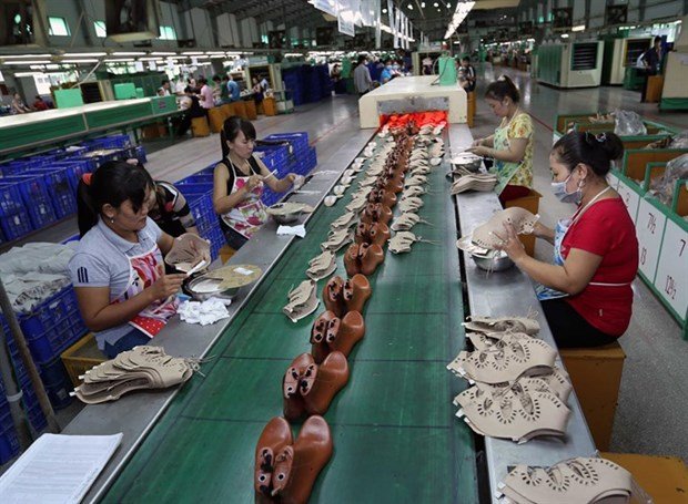 Vietnamese footwear makers unfazed by TPP demise hinh anh 1