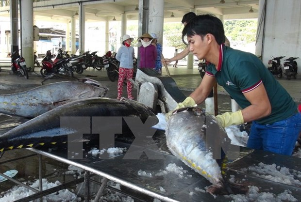 Nearly 165 billion VND for fisheries restructuring in 2017-2020 hinh anh 1