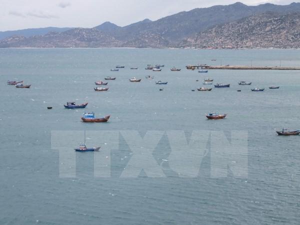 Brunei seizes Vietnamese fishing boat hinh anh 1