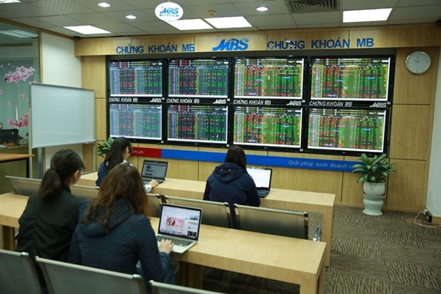 VN Index falls on portfolio review hinh anh 1