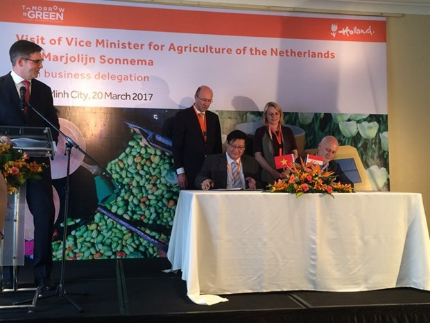 VN, Netherlands to up agriculture ties hinh anh 1