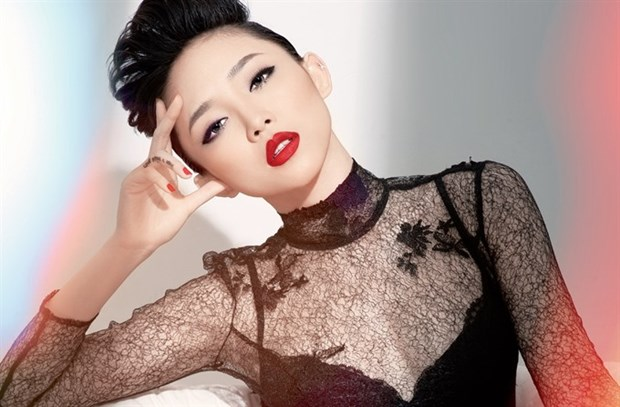 Vietnamese pop idols to attend Seoul Fashion Week hinh anh 1