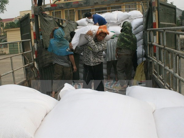 Dak Nong: Rice delivered to over 8,500 needy students hinh anh 1