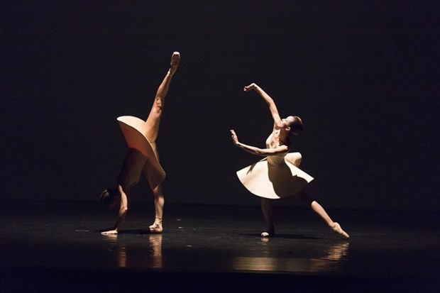 Ballet with Tchaikovsky and Ravel to be restaged at Opera House hinh anh 1
