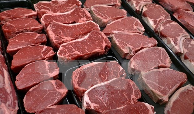 Ministry asked to consider Brazilian meat import suspension hinh anh 1