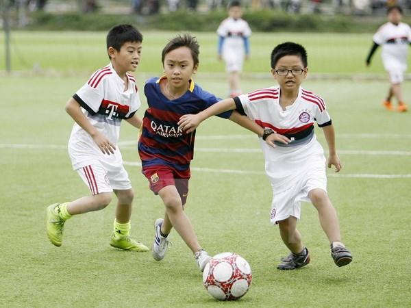 FIFA, UEFA help Thua Thien-Hue develop community-based football hinh anh 1
