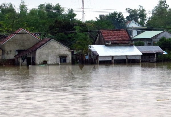 Vietnam forecast to see more flash floods, landslides in 2017 hinh anh 1