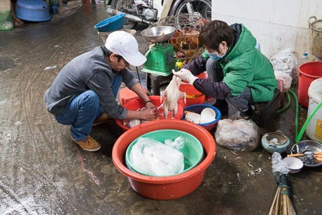 Poultry sale, slaughter raise avian flu fears hinh anh 1